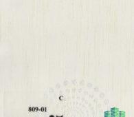 deko-809-1
